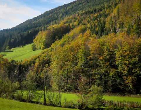 Blick vom Balkon - MendlingBauer - Urlaub am Bauernhof - Göstling/Lassing/Hochkar